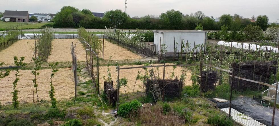 A New Change is coming , Gezondere stadslandbouw!