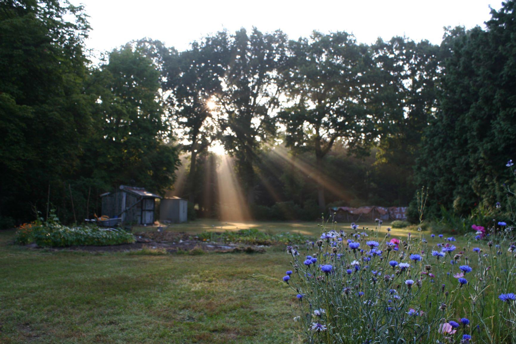 Nieuw groen geloven klooster in Huijbergen