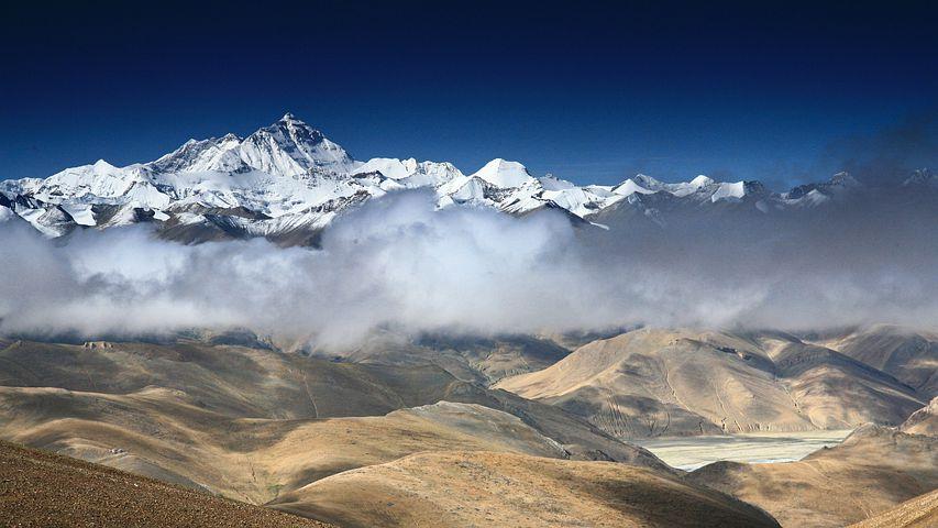 Onderzoek toename plantenleven Himalaya