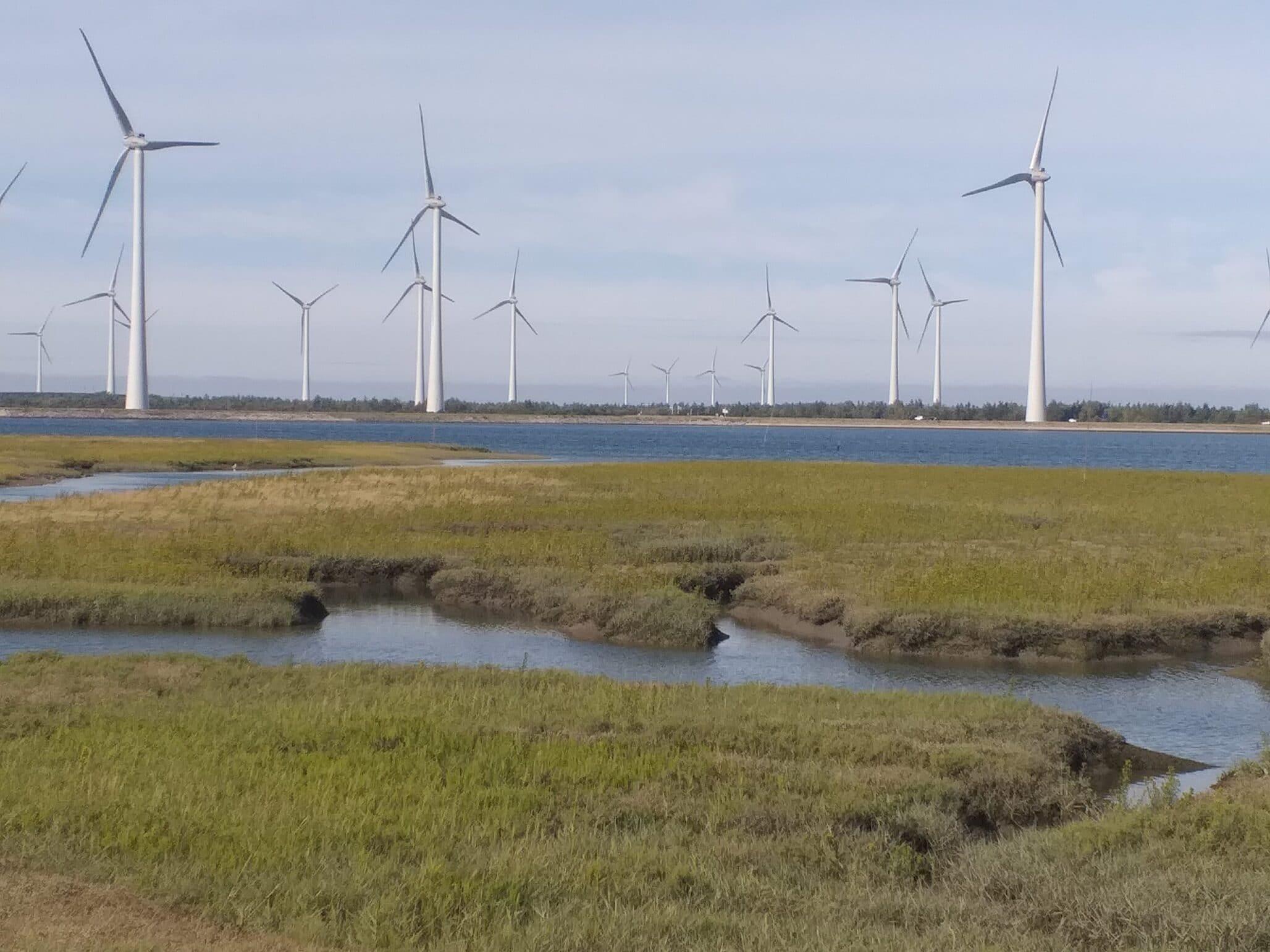 Europa, Japan en de Verenigde Staten: minder uitstoot koolstofdioxide