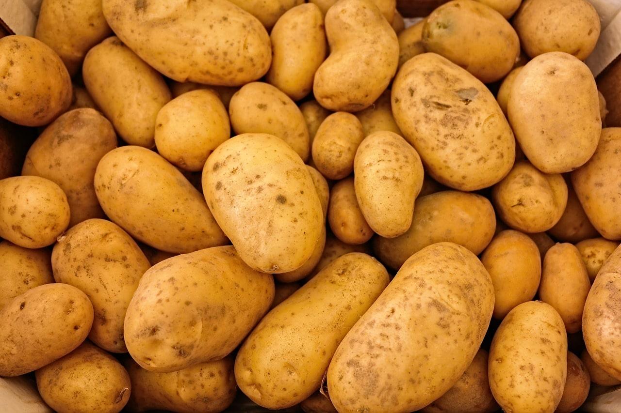 Overschot aardappel door wegvallen markten, restaurants, cafetaria en patatkramen!
