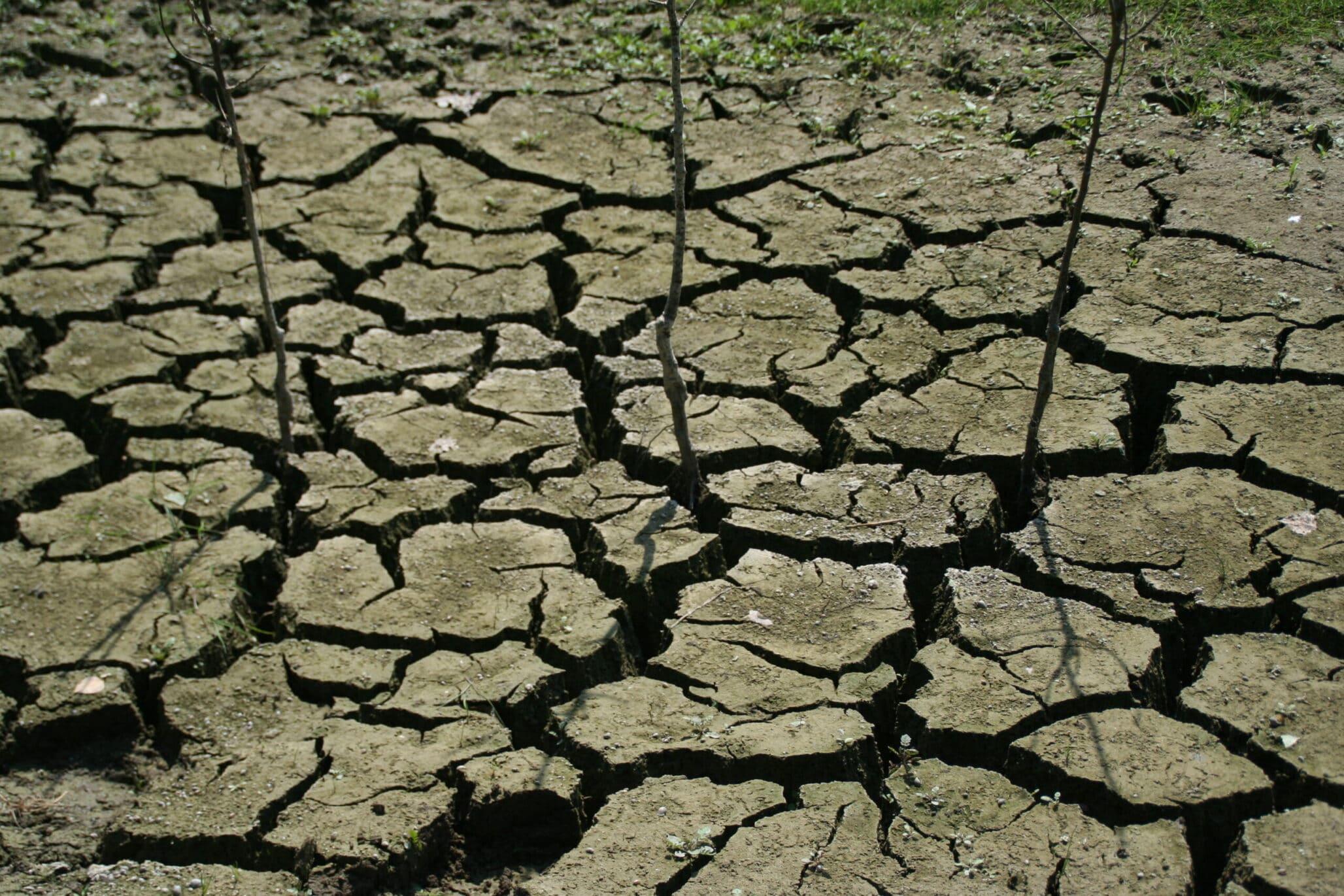 Uitputting landbouwgrond in Zuid-Spanje