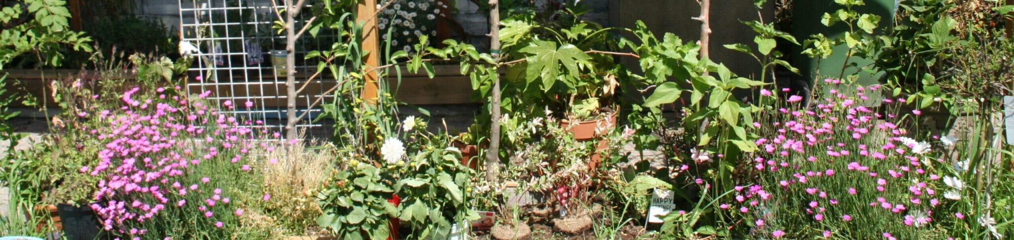 Slimme tuin