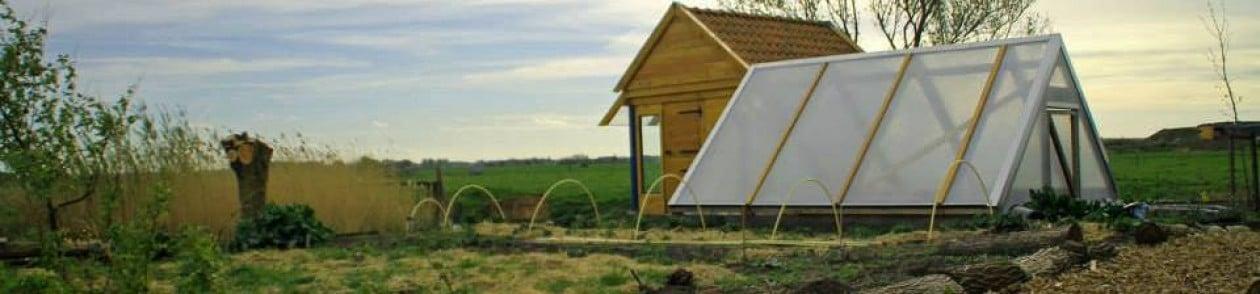 Green paper:  Voedsel, Omgeving, Landbouw en Gezondheid integraal verbonden