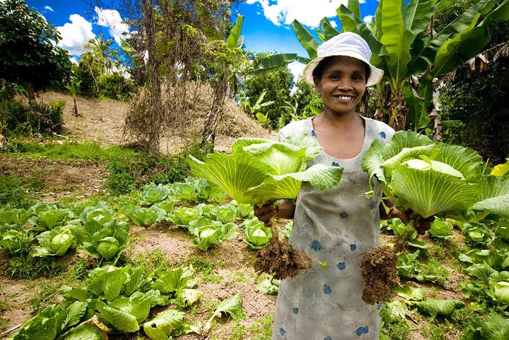 Is voedselzekerheid eigenlijk wel alleen te garanderen via een commercieel voedselsysteem?